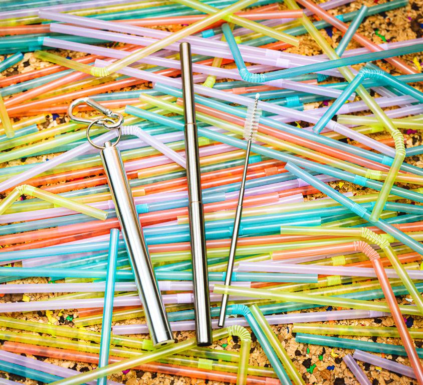 Telescopic Stainless Steel Straws x 2