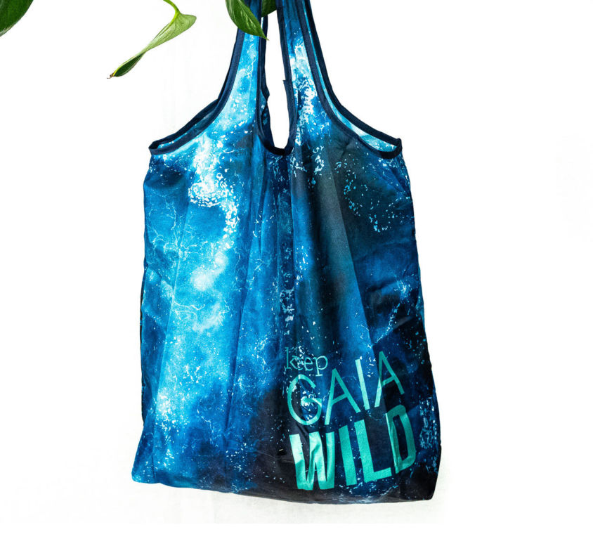 Foldable Grocery Bags x 2